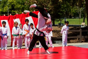 Sensei Dan throwing at a cherry blossom demo