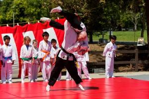 Sensei Dan throwing at a cherry blossom demo