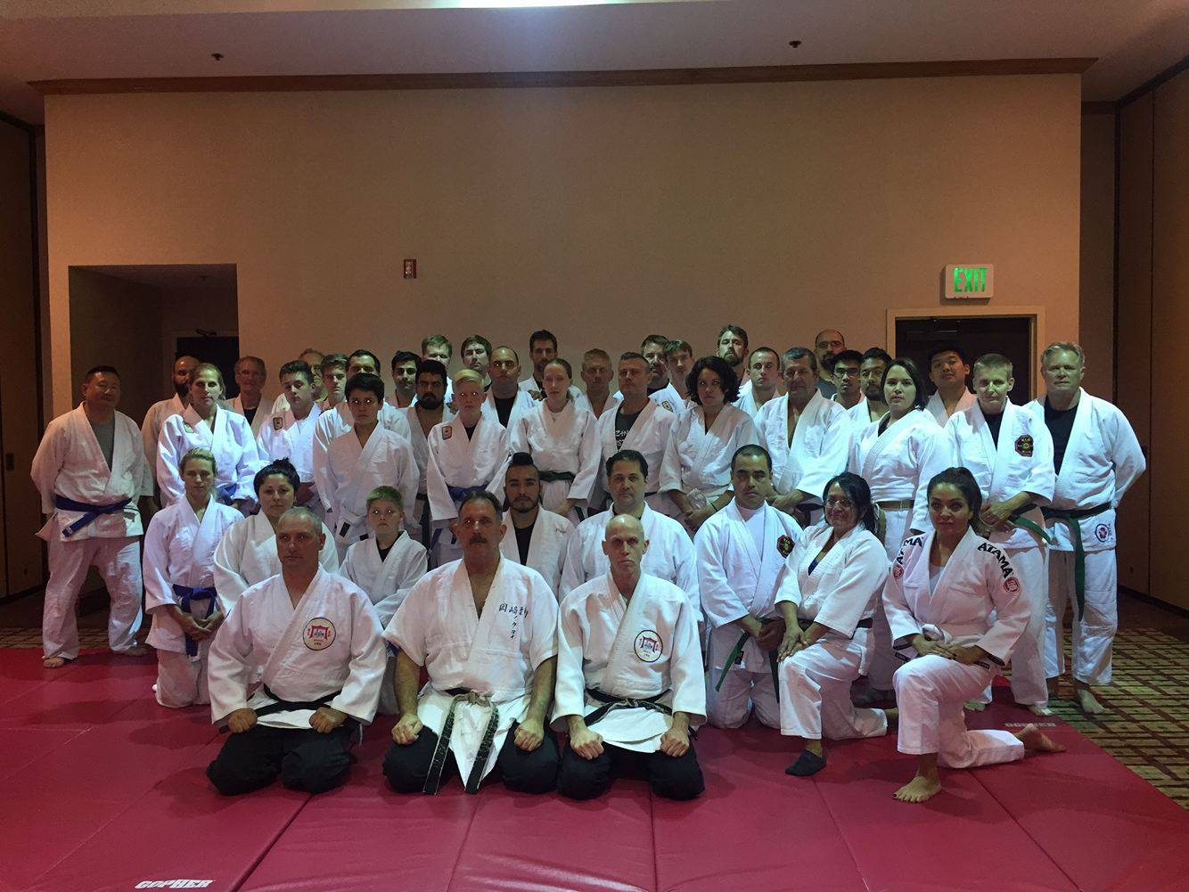 "Yawara ""From Control to Knockout"" Class, taught by Professors Tony Janovich and Clive Guth, with the help of Sensei Jason Romano. 2017 American Judo & Jujitsu Federation Convention"